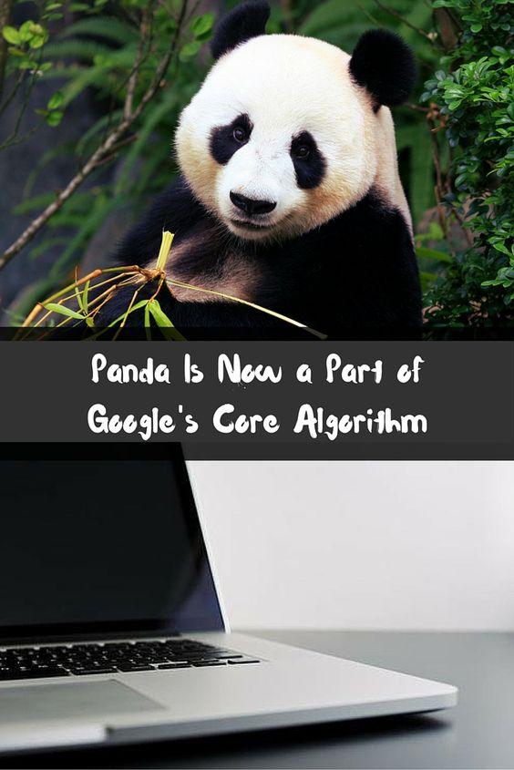 Panda is a part of Google Core Algorithm Updation